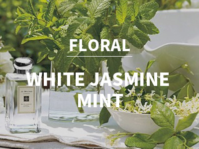 화이트 자스민 민트 (White Jasmin Mint)(Jo malone Type)