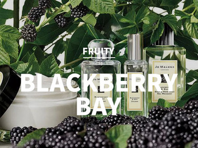 블랙베리 앤 베이 (BlackBerry Bay)(Jo Malone Type)